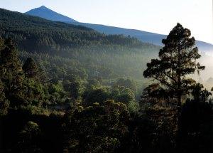 Things to do in Tenerife, TEIDE