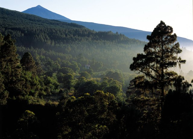 Things to do in Tenerife, TEIDE