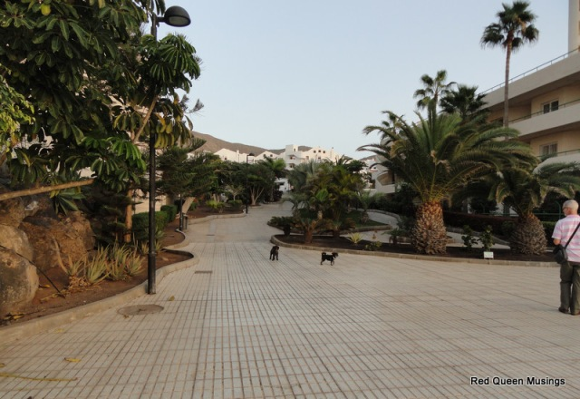 The seafront Los Cristianos