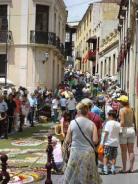 la-orotava-crowds-line