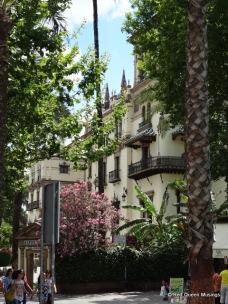 Santa Cruz Seville (7)