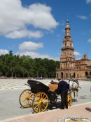 Seville (120)