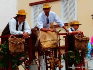 Fiesta de San Marcos (2)