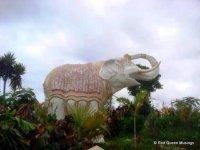 07-Siam Park (7)
