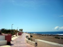 04-Palm Mar (7)