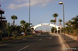 15-Palm Mar (6)