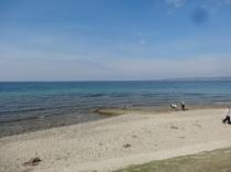 Beach Cemetary (17)