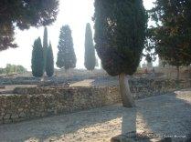 Italica (7)