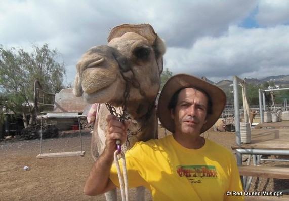 Camel Park  (11)