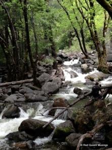 Yosemite (15)