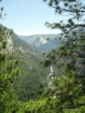 Yosemite (16)