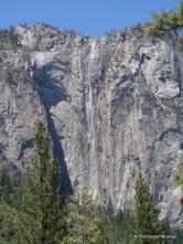 Yosemite (18)