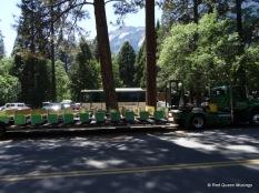 Yosemite (21)