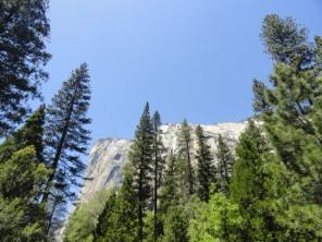 Yosemite (24)